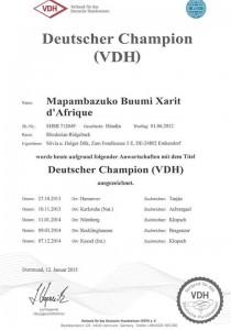 D Champion